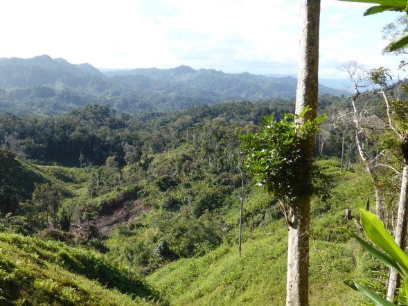 Titleimage: Managing telecoupled landscapes
